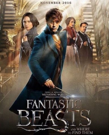 Where to Find Fantastic Beasts