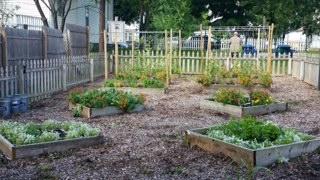 Planting the Seeds of Generosity