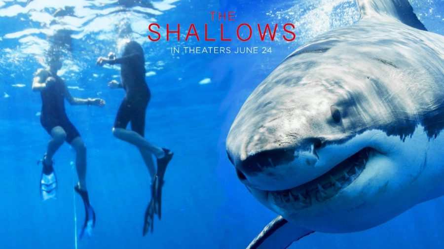 The+Shallows+Movie+Review