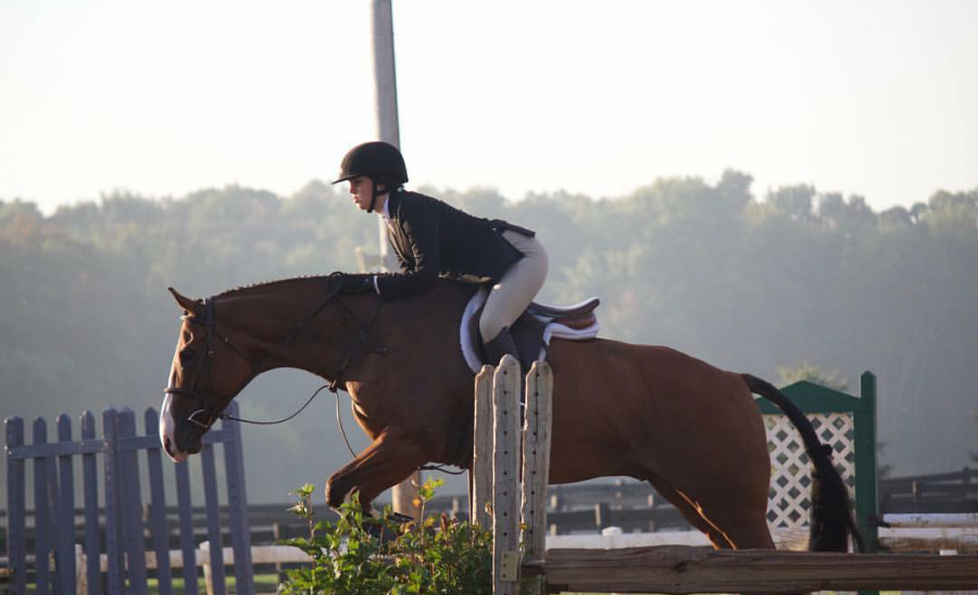Rachel+Clayton+Takes+On+Training+Police+Horses