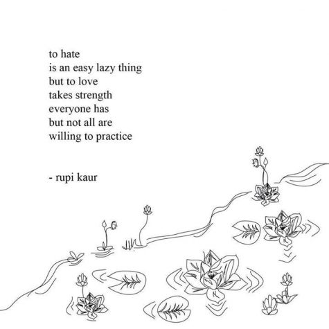 Milk and Honey: a genuinely raw cluster of poems – The