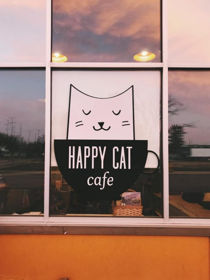 Happy Cat Cafe makes a difference