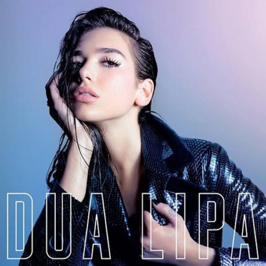 Dua Lipa's debut album is a promising start to a career