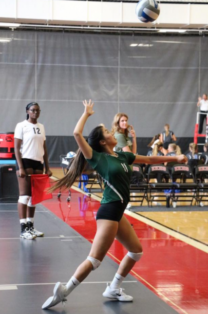 Player Profile: Tessa Guerre