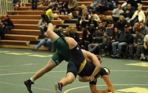 Ranger wrestling takes third at Portage Central