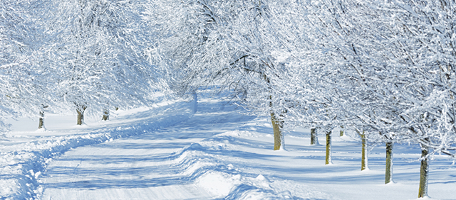 Dont complain about snow days