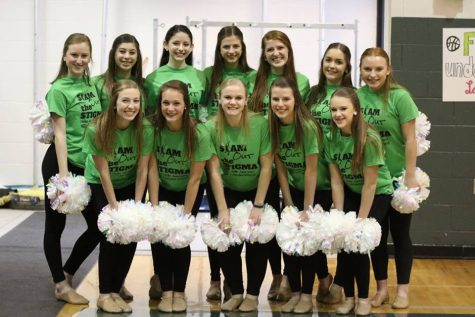 Dance team has successful season with talented senior class