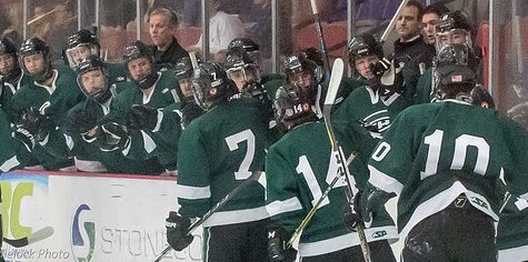 Hockey suffers tough overtime loss in Regional Semifinals 3-2