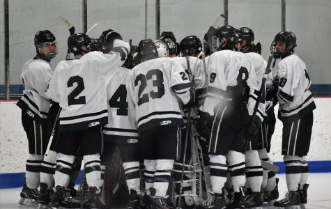 Varsity hockey preview: West Ottawa Panthers