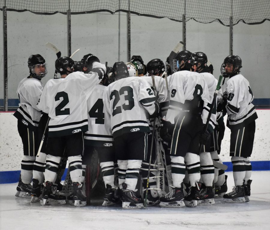 Varsity+hockey+preview%3A+West+Ottawa+Panthers