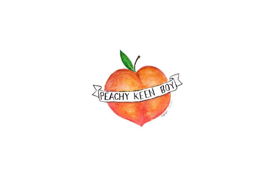 Aaron Jachim's blog, Peachy Keen Boy, launches to the public
