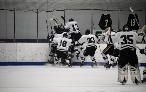 A look back at FHC hockey's incredible comeback season