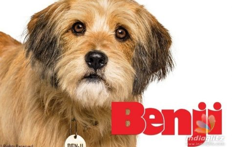 The Netflix original movie Benji succeeds all expectations
