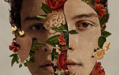 Shawn Mendes did not disappoint with his latest album
