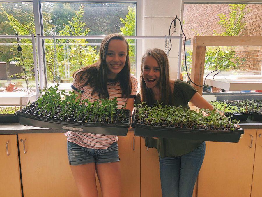 Greenhouse Week 2 (Sept. 10-14)