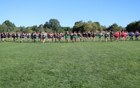 Cross country season goes far better than expected