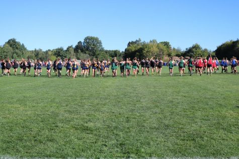 Ranger cross country teams finish fifth and second at this weekend's Regional Meet