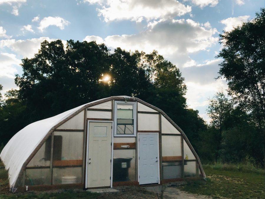 Greenhouse+Week+4+%28Sept.+24-28%29