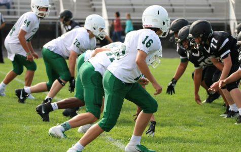 Freshman football preview: Northview Wildcats