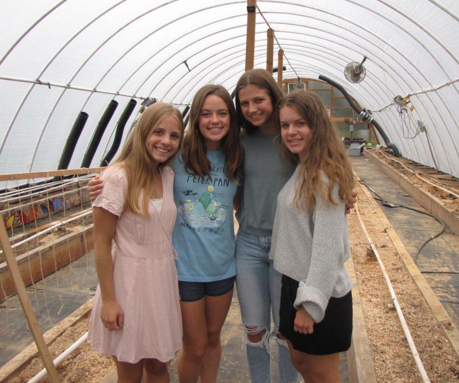 Greenhouse Weekly Blogs- Season 2