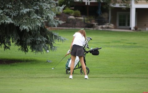 Girls varsity golf earns second place in the OK White