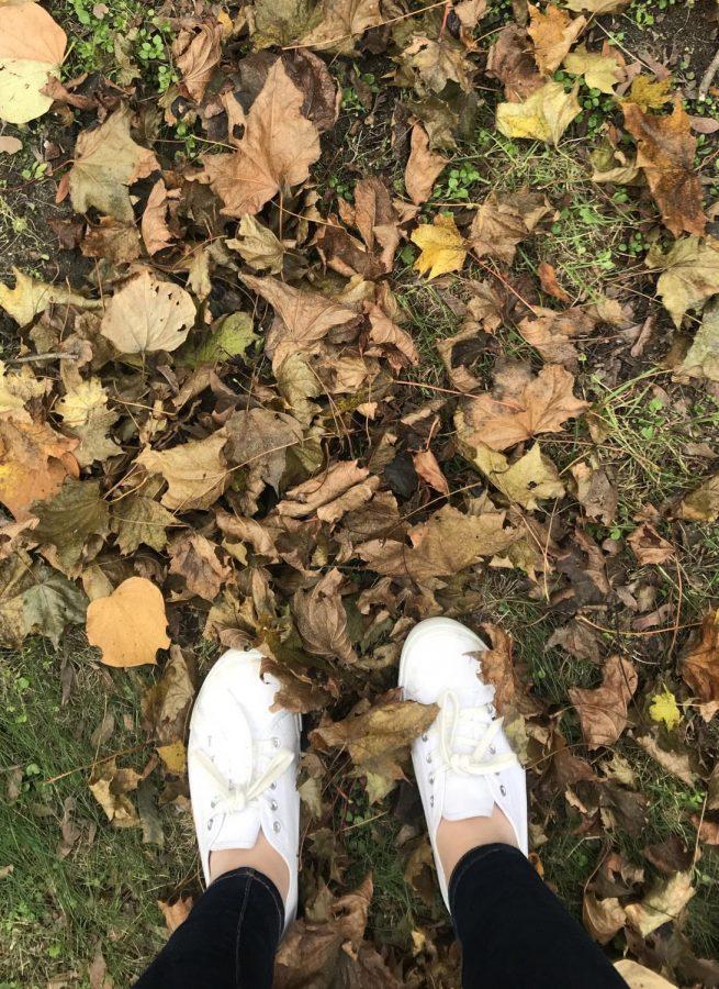 Falling through fall