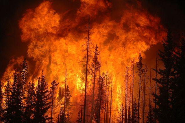 Light the world on fire