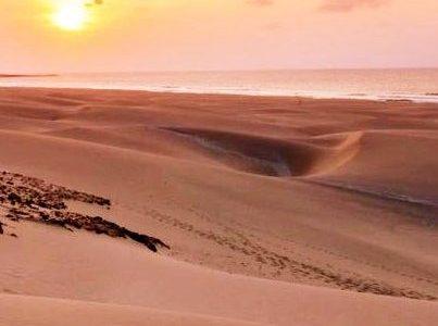 Deserted in my own desert