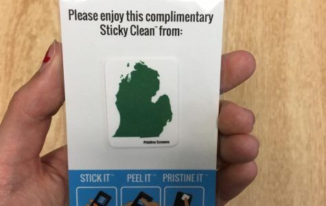 Intro to Business 2018: Sticklean