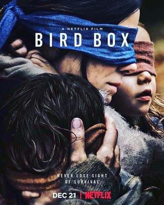 Bird Box has become famous worldwide, and it's easy to see why