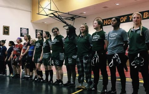 Girls wrestling brings back medals from first-ever Michigan Girls Wrestling State Championship