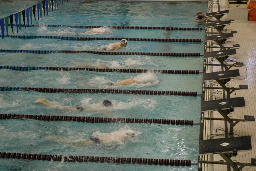 Boys swim and dive has a huge night and beats Spring Lake 102-78