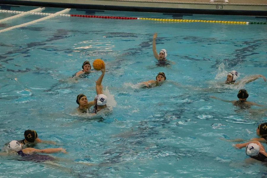 Varsity water polo falls to Zeeland East 11-5