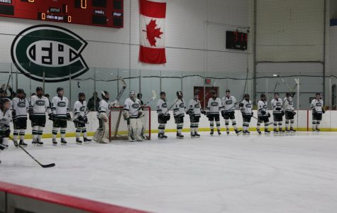 Hockey defies expectations, finishes with 17-5-2 record