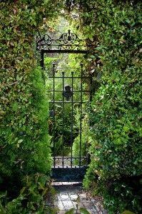 Inside the Garden: break the barrier