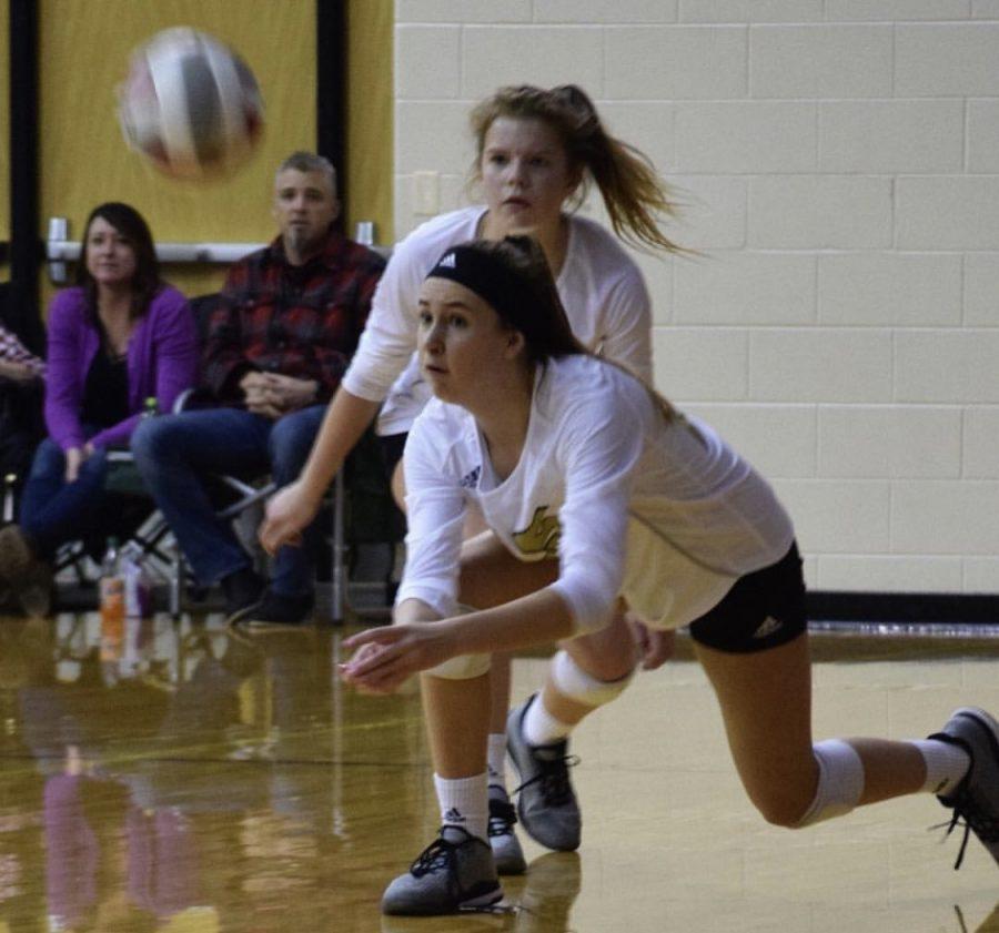 Player Profile: Sarah Dunn