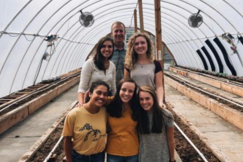 Greenhouse Weekly Blogs- Season 1