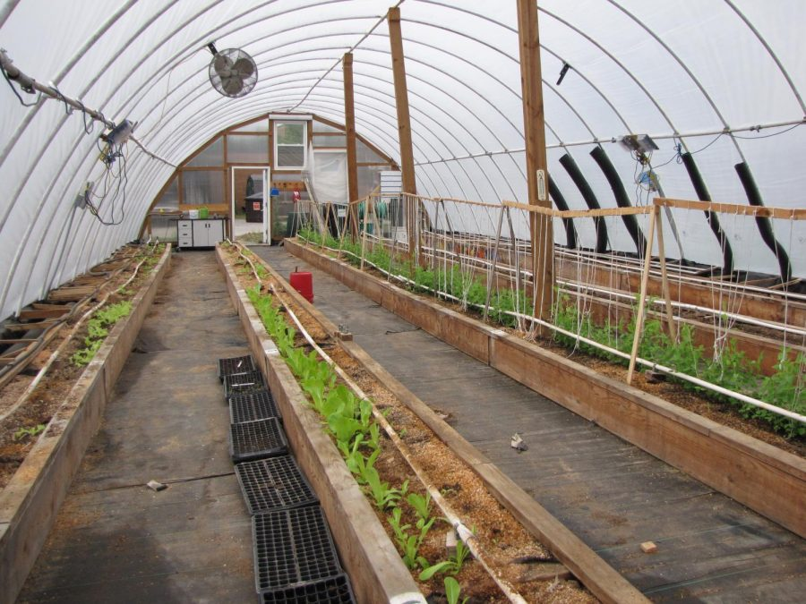 Greenhouse+Blog+5-+Water+and+watersheds