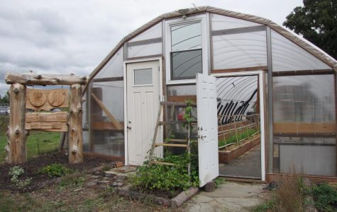 Greenhouse Blog 4- Climate change solutions