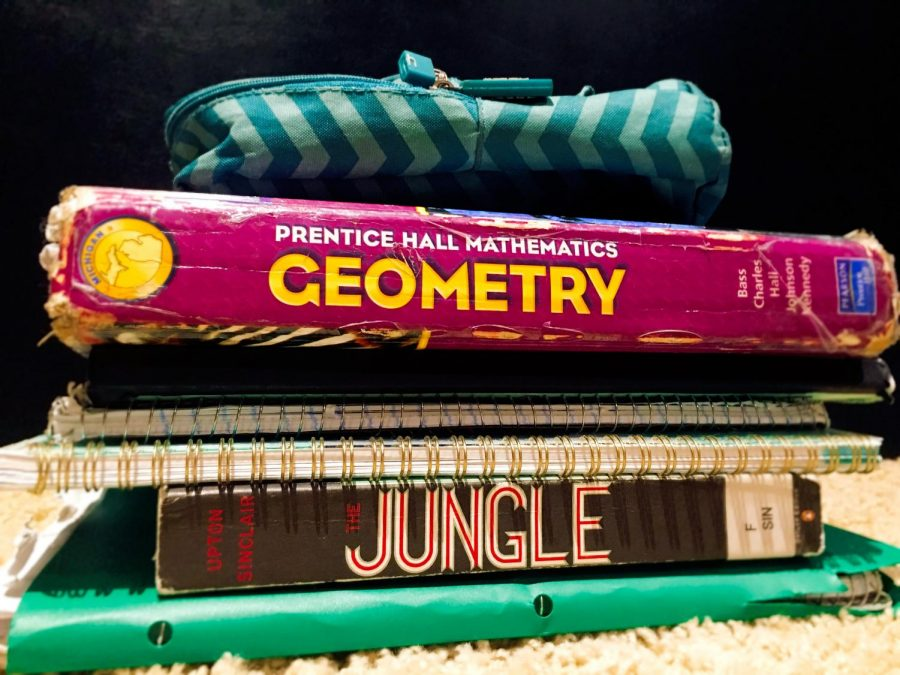 The+peaks+and+pitfalls+of+students%27+studying+habits