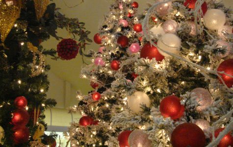 There are many similar and different traditions for the holiday season