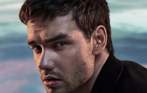 Liam Payne's newest album LP1 did not disappoint