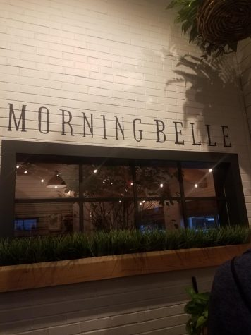 Morning Belle is the light in the dark