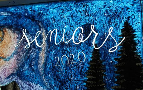 Window Painting 2020: Photo Gallery