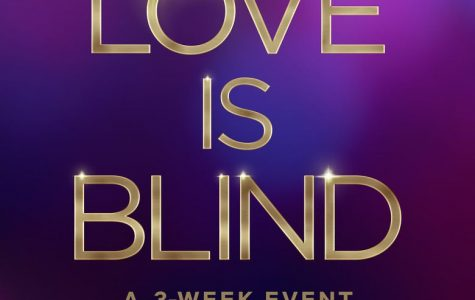 Netflix's new series Love is Blind was a shocking success
