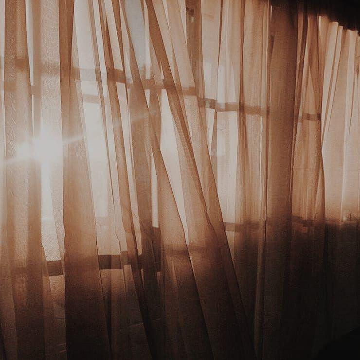 The+sun+shown+through