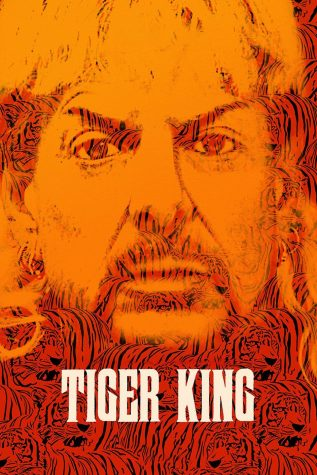 Netflix's Tiger King: Murder, Mayhem and Madness chronicles a disaster you can't make yourself look away from