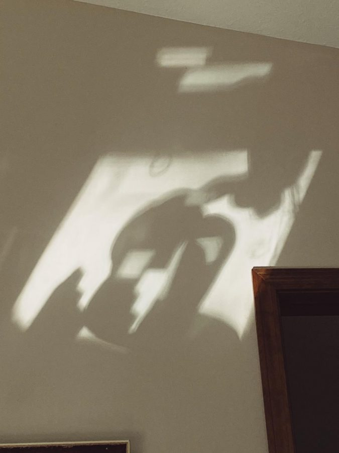 I greatly enjoy taking photos of the shadows on my walls.