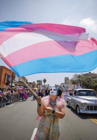 This is the flag for the transgender community, waved at the San Diego pride parade