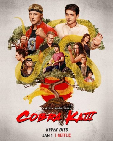 Cobra Kai is not only nostalgic for Karate Kid fans but is also starting a new generation of karate lovers